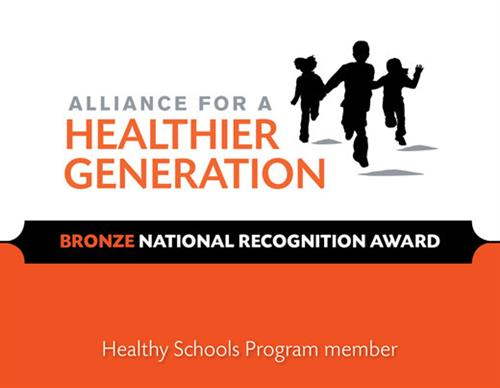 Image result for bronze healthy school