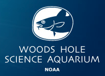 Woods Hole Science Aquarium