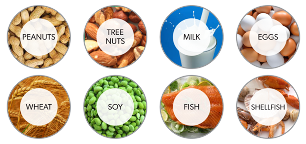 The Big 8: Peanuts, Tree Nuts, Milk, Eggs, Wheat, Soy, Fish and Shellfish